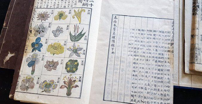 uppslag med japanska tecken samt blommor