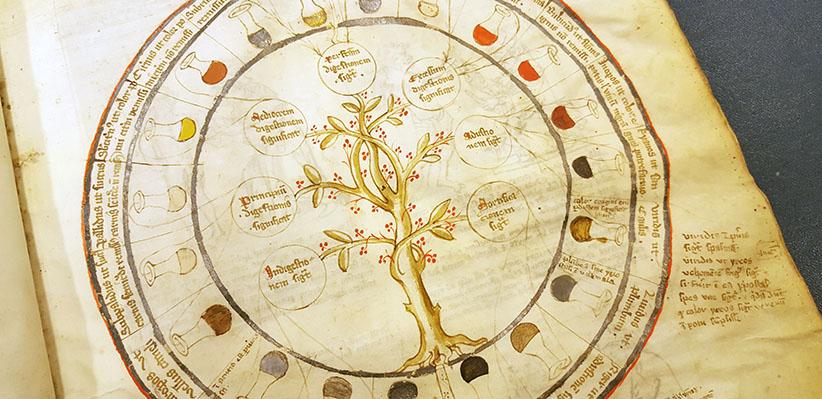 cirkelformat diagram med urinprover med olika färger i cirkel runt ett träd