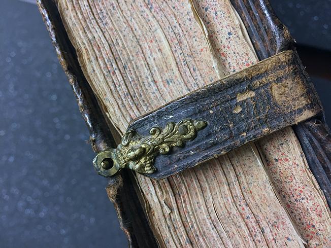 foto av ett boksnitt över vilket ett spänne i metall på en läderrem är knäppt