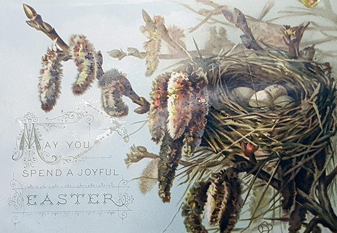 bild på ett påskkort med ett fågelbo med ägg i med videkissar omkring