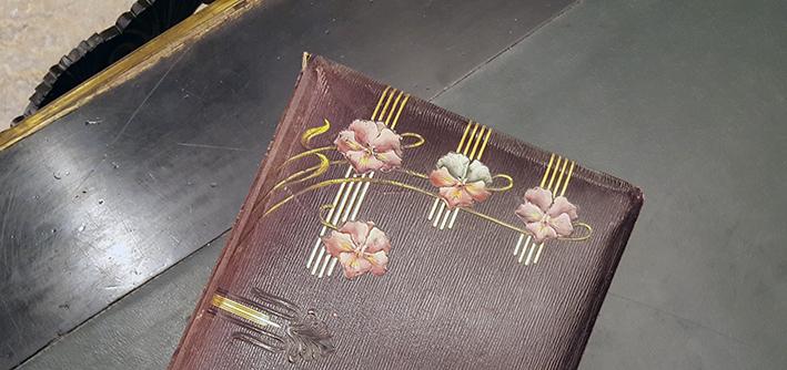 ett fotoalbum med fyra violliknande blommor i rosa och grönt mot brun botten