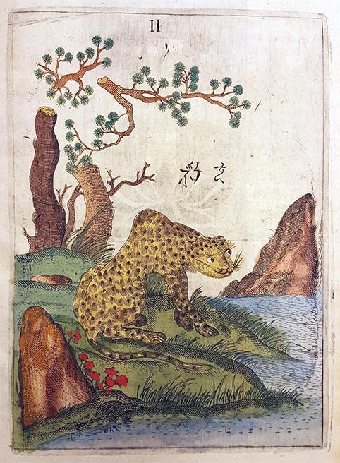 tiger i ett asiatiskt landskap