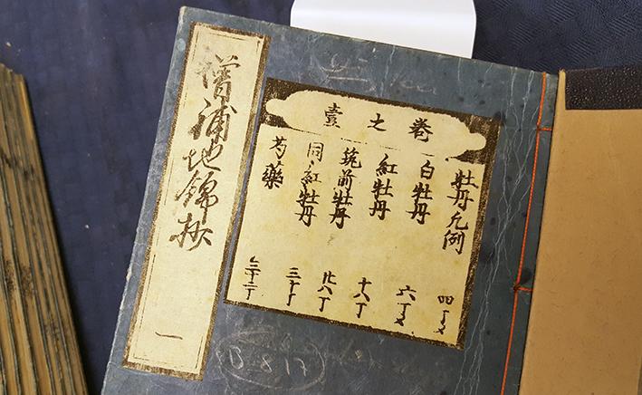 närbild på titel på japanska