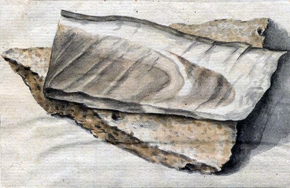 en bit bröd med en sillbit liggande ovanpå