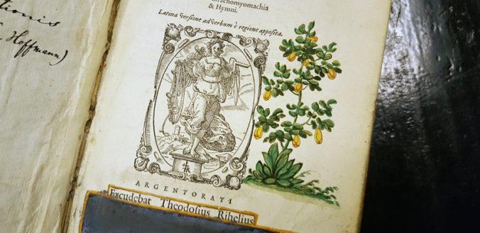bredvid ett boktrykcarmärke på ett titelblad syns en handritad grön växt med gula blommor