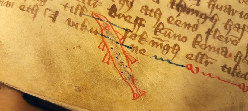 runt en lagning ipergamentet har någon tecknat konturerna av en gäddlik fisk i rött