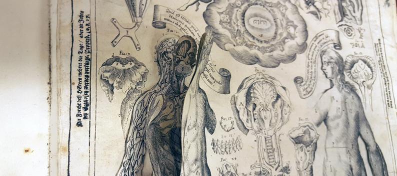 detalj från planch med kropp i flera papperslager
