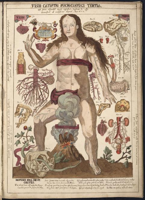 planschblad med kvinna