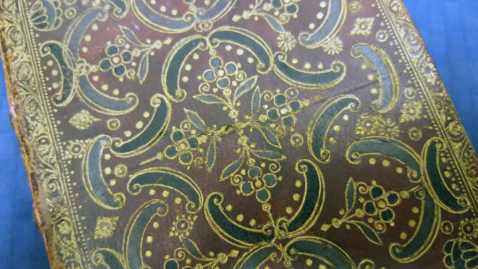 bärbild på brunt bokband med svarta skinninläggningar och guldtryckt dekor
