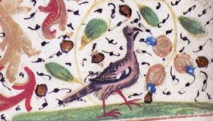 en liten fågel