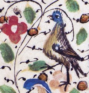 en fågel i en marginal
