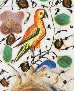 en fågel i rött och gult i en marginal