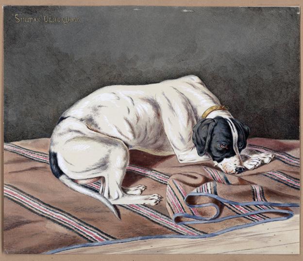 en vit hund med svarta öon och svart tecknin gunt ögonen ligger på en randig matta