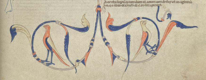 två fåglar med ryggen vända mot varandra tecknade i brunt, rött och blått