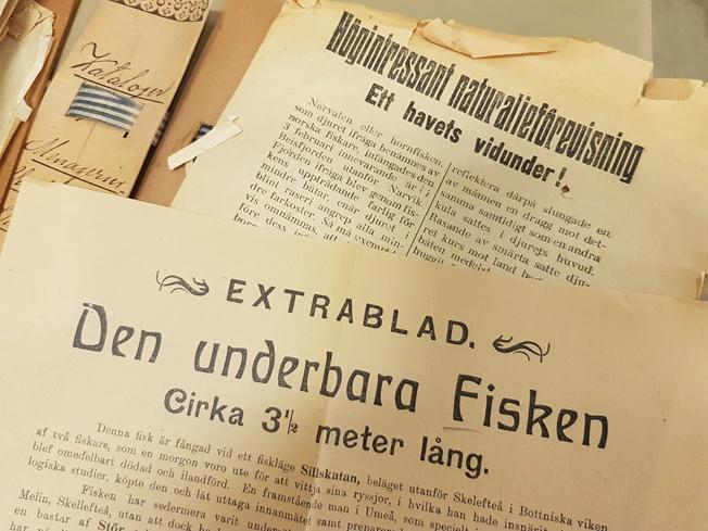 ett par tryckta blad om fiskfenomen