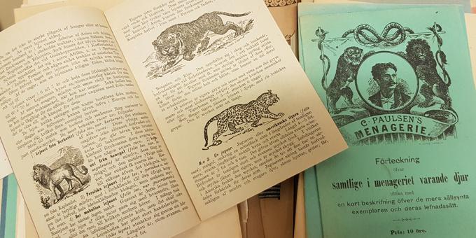 uppslag i häften med information om vilda djur