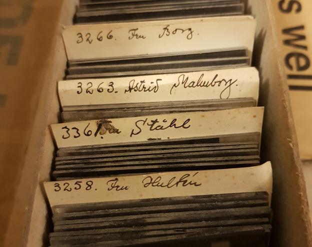 närbild på glasplåtar i en låda med namnlappar
