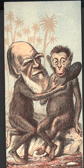 Charles Darwin och en apa ser sig i en spegel