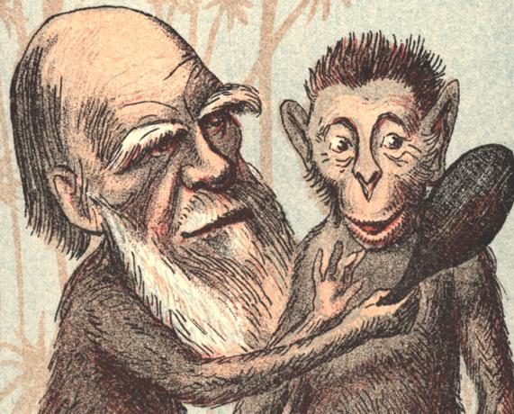 charles darwin och en apa tittar sig i en spegel