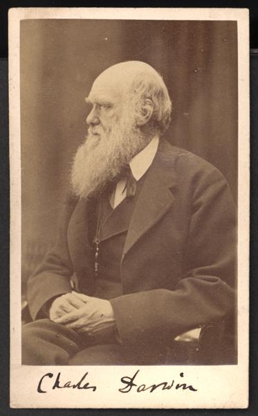 darwin i profil med autograf under