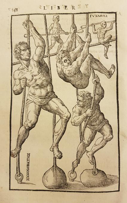 tre män i höftskynken klättrar i rep, bakom dem balanserar två män på lina