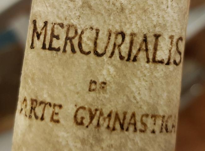 detlaj från bokens rygg med titeln skriven i bläck